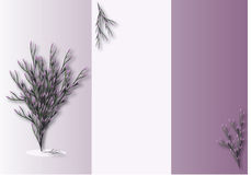 Purple flower. Sample text with purple flowers Stock Photography
