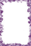 Purple Flower Border. An illustrated floral border on a white background Stock Photo