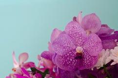 Purple flower decoration Stock Photos