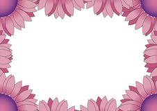 Purple flower frame Royalty Free Stock Photography