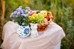 Purple flower, a fruit basket and cat. Purple flower, a fruit basket and a cat Stock Photo