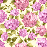 Purple flower hydrangea Royalty Free Stock Photo