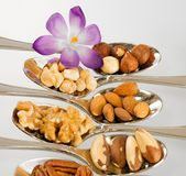 Purple flower and many different kinds of nuts for food stock image