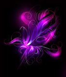 Purple flower over black background vector illustration