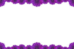 Purple Flower Picture Frame isolated on white background Royalty Free Stock Photography