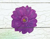 Purple flower picture paint on wooden table Royalty Free Stock Photo