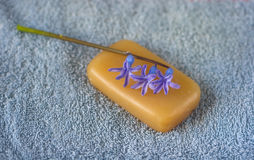Purple flower on a piece of natural soap Stock Photos