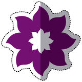 Purple flower with pointed petals icon Royalty Free Stock Photos