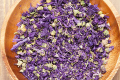 Purple flower spice Stock Photography