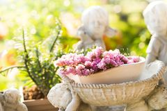 Purple flower on white old Potted statue in the garden with ligh. T Stock Photos