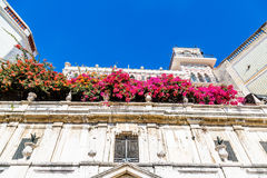 Purple Flowers on Ancient Lisbon Building Royalty Free Stock Photography