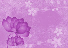 Purple flowers background Royalty Free Stock Image
