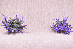 Purple flowers on a beige linen background Royalty Free Stock Photo