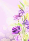 Purple flowers on blured background with bokeh. Floral corner border Royalty Free Stock Photography