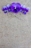 Purple flowers on a canvas. Purple flowers on a natural canvas Royalty Free Stock Photography