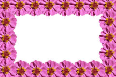Purple flowers frame. Isolated on a white background Stock Photography