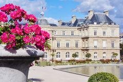 Purple flowers from garden of Luxembourg Palace. Cloudy day. Paris, France stock image