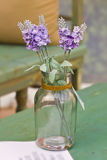 Purple flowers on a glass pot Royalty Free Stock Photo