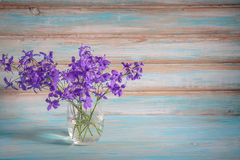 Purple flowers in a glass. stock photos