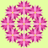 Purple flowers with green background. Purple and pink flowers on the light green background Stock Images