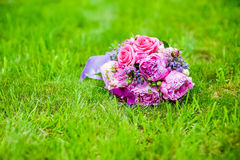 Purple flowers on green grass Stock Photo