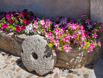 Purple flowers and millstone Royalty Free Stock Photo