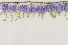 Purple flowers on muslin fabric Royalty Free Stock Photos