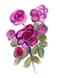 Purple flowers painted in watercolor Stock Photography