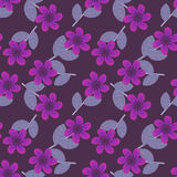 Purple flowers pattern Stock Image