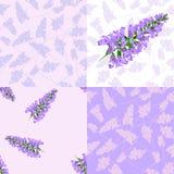 Purple flowers seamless pattern Royalty Free Stock Photo