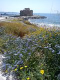 Purple flowers by the seashore castle. Fort by the sea with lavender flowers Royalty Free Stock Photos