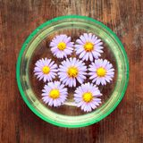Purple flowers spa in glass bowl. On wooden background Stock Photos