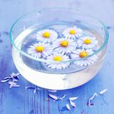 Purple flowers spa in glass bowl. On wooden background Stock Images