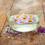 Purple flowers spa Royalty Free Stock Photos