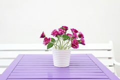 Purple flowers on a table Stock Photos