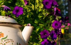 Purple flowers with a tea pot spout in the foreground stock photography