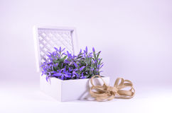 Purple flowers in a white ornate box royalty free stock images