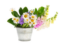Purple Foxglove And White Daisies In Bucket Royalty Free Stock Images
