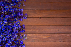 Purple foxglove flowers. On a wooden with copy space Royalty Free Stock Photos