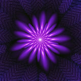 Purple Fractal Flower. Purple  flower shaped fractal with a textured background Stock Photo