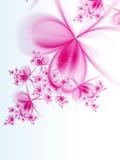Purple fractal flowers on white background Stock Image