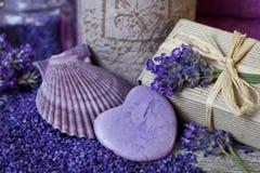 Free Purple Fragrant Lavender Blossom Still Life Stock Photography - 160000172