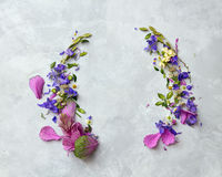 Purple frame with flowers Stock Images