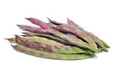 Purple french beans Stock Photography
