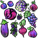 Purple fruits and vegetables. Watercolor hand drawn fruits and vegetables. Stock Images
