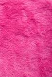 Purple fur | Texture Royalty Free Stock Photo