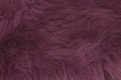Purple fur texture Stock Photography