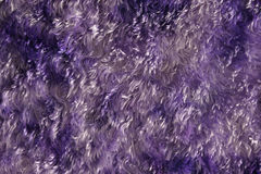 Purple furry material background. Purple toned fleece fabric background Royalty Free Stock Photos