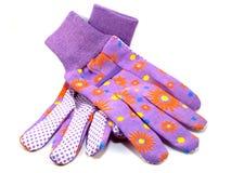 Purple Gardening Gloves stock images