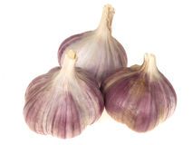 Purple Garlic Stock Image